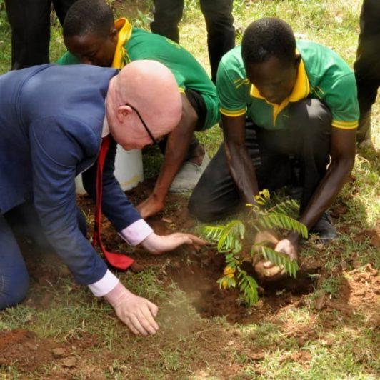 Green Simiyu tree planting